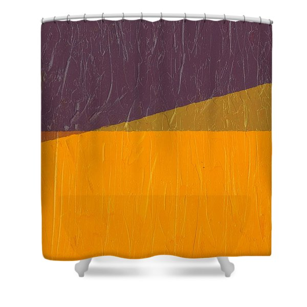 Perspective in Color Collage 11 Shower Curtain by Michelle Calkins
