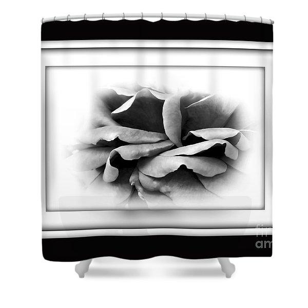 Petals And Shadows 2 Shower Curtain by Kaye Menner