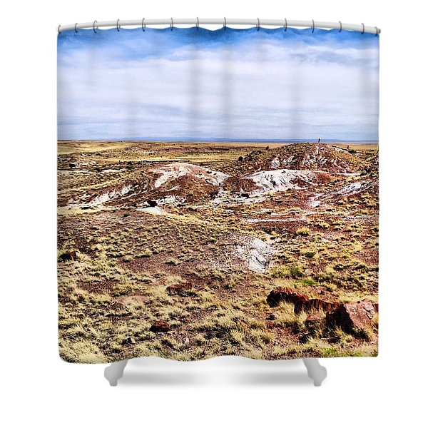 Petrified Forest National Park Shower Curtain by Dan Sproul
