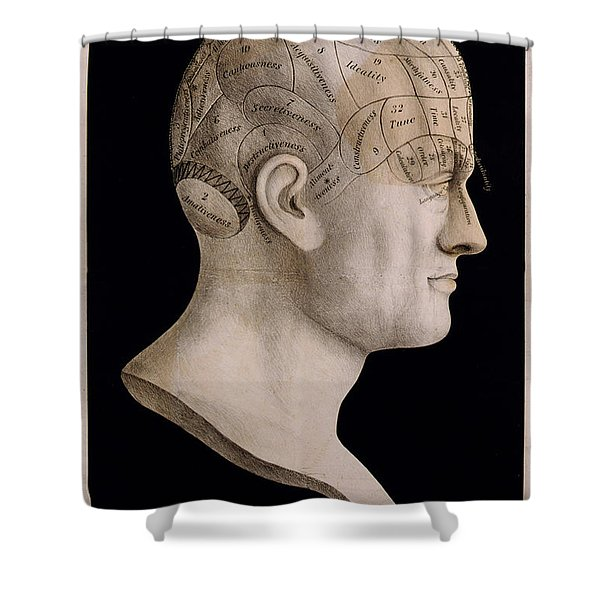Phrenology Shower Curtain by Nomad Art And  Design