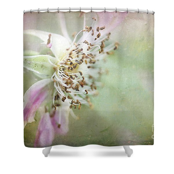 Pink Impression Shower Curtain by Teresa Zieba