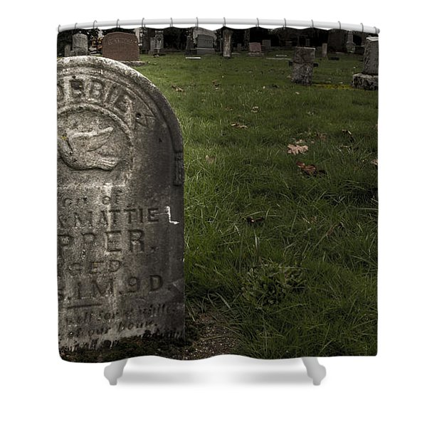 Pioneer Grave Shower Curtain by Jean Noren