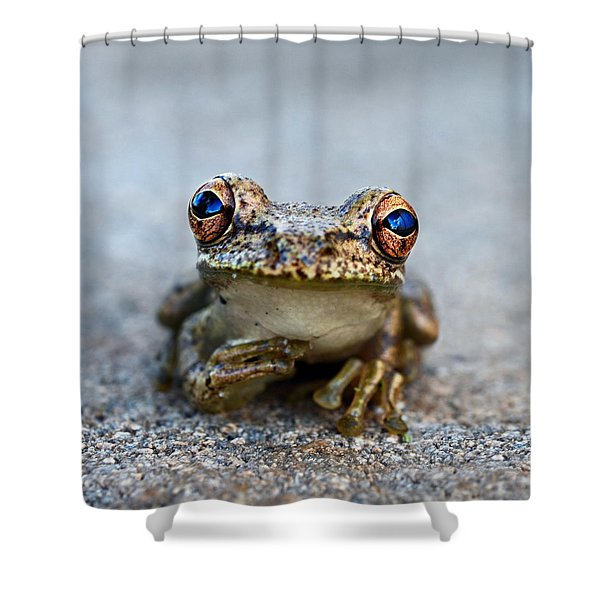 pondering frog Shower Curtain by Laura  Fasulo