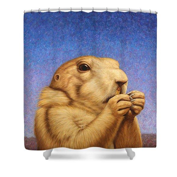 Prairie Dog Shower Curtain by James W Johnson
