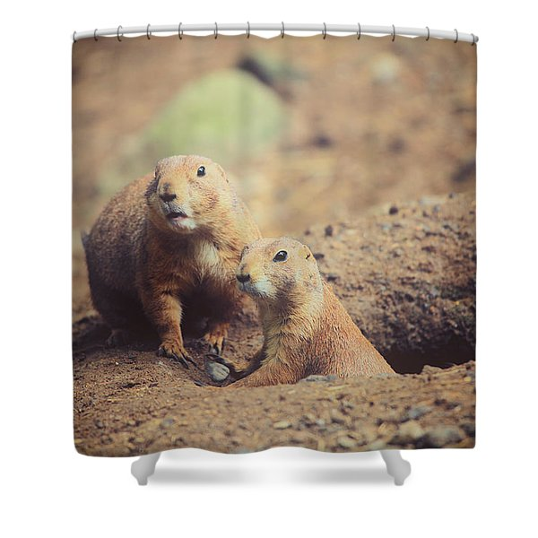 Prairie Dogs Shower Curtain by Karol  Livote