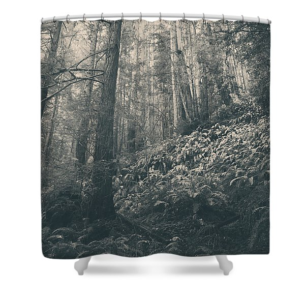 Pretty Darling Do Not Cry Shower Curtain by Laurie Search