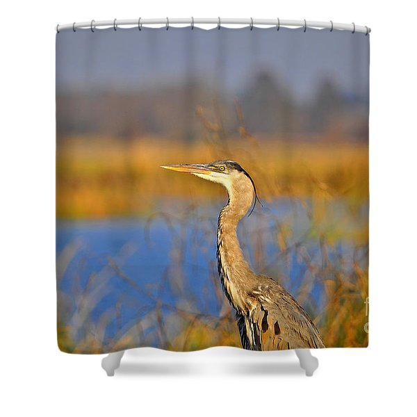 Proud Profile Shower Curtain by Al Powell Photography USA