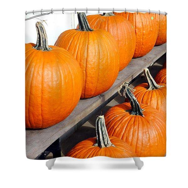 Pumpkins Shower Curtain by Valentino Visentini