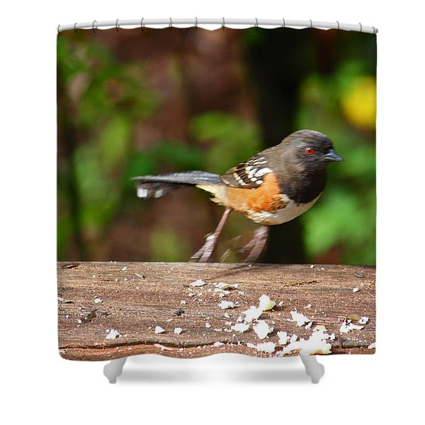Push Off Before Take Off Shower Curtain by Kym Backland