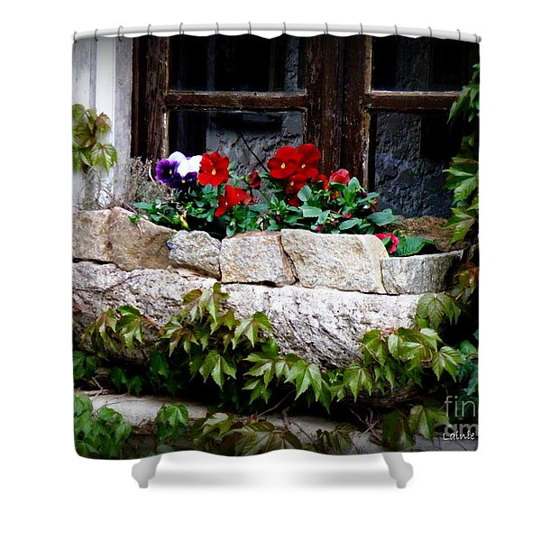 Quaint Stone Planter Shower Curtain by Lainie Wrightson