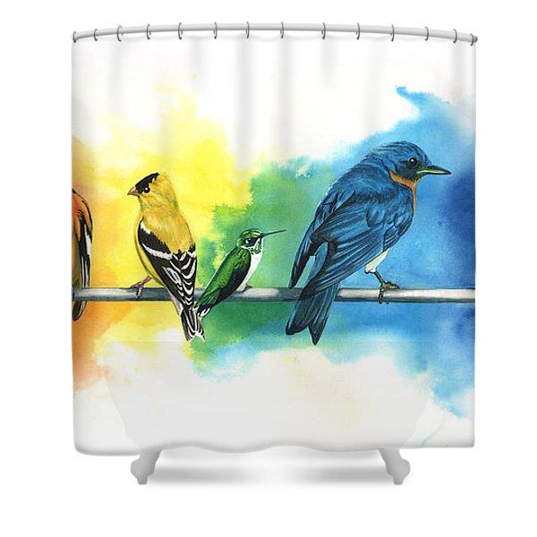 Rainbow Birds Shower Curtain by Antony Galbraith