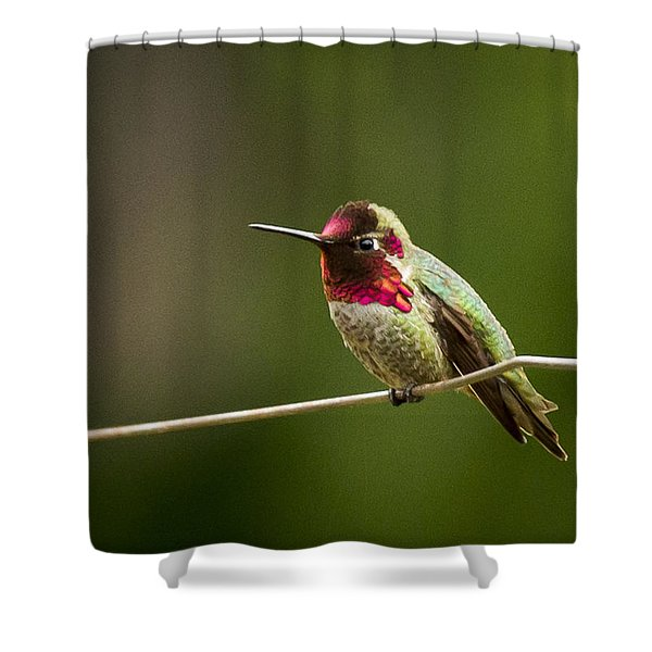 Ready To Zoom Shower Curtain by Jean Noren