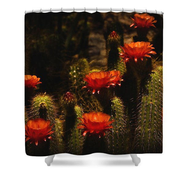 Red Cactus Flowers Shower Curtain by Saija  Lehtonen