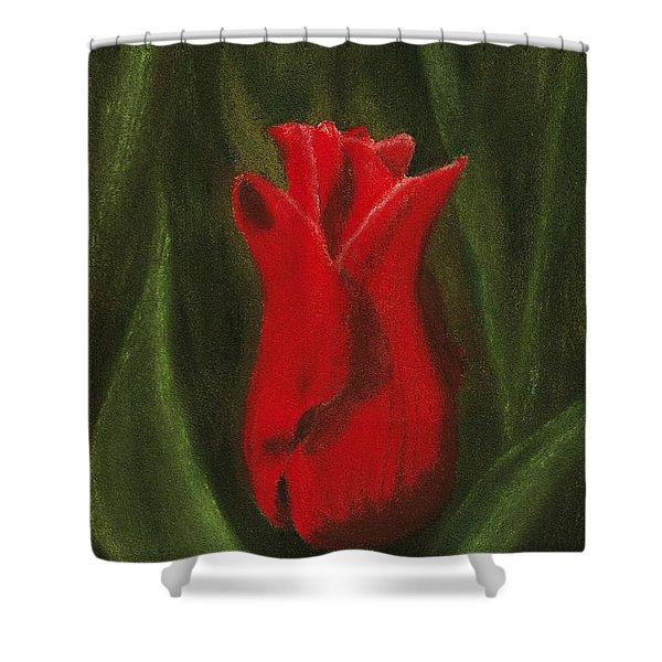 Red Elegance Shower Curtain by Anastasiya Malakhova