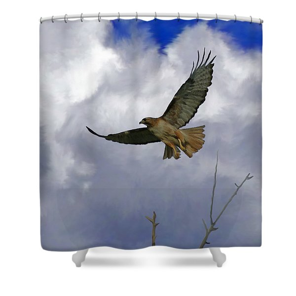 Red Tail Hawk Digital Freehand Painting 1 Shower Curtain by Ernie Echols