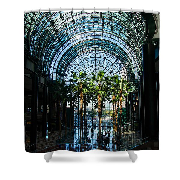 Reflecting on Palm Trees and Arches Shower Curtain by Georgia Mizuleva