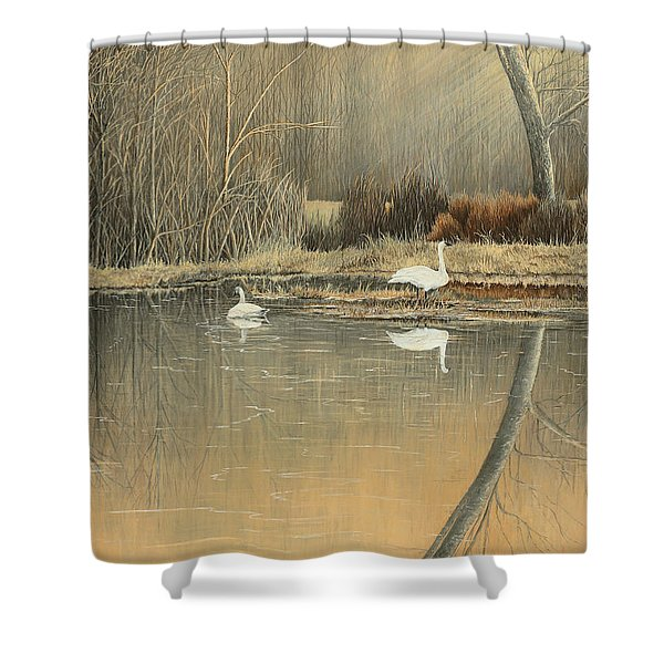 Reflections Shower Curtain by Mary Ann King