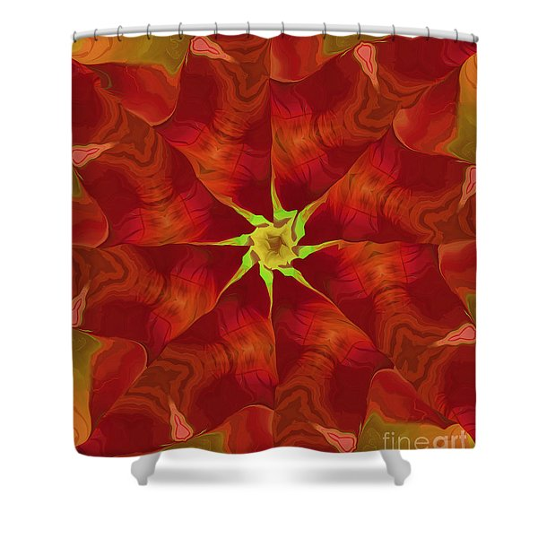 Release of The Heart Shower Curtain by Deborah Benoit