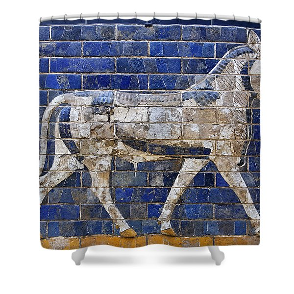 Relief from Ishtar Gate in Babylon Shower Curtain by Robert Preston