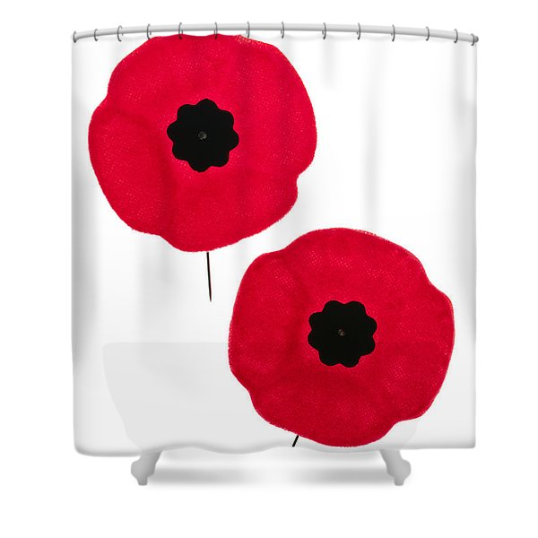 Remembrance Day Poppies Shower Curtain by Elena Elisseeva