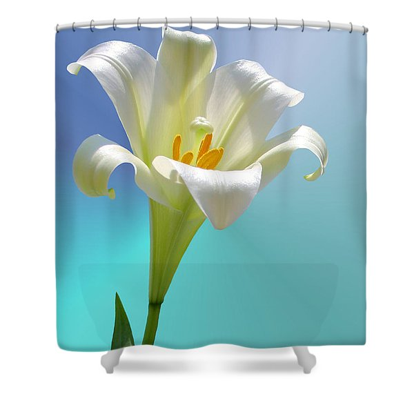Remembrance Shower Curtain by Kristin Elmquist
