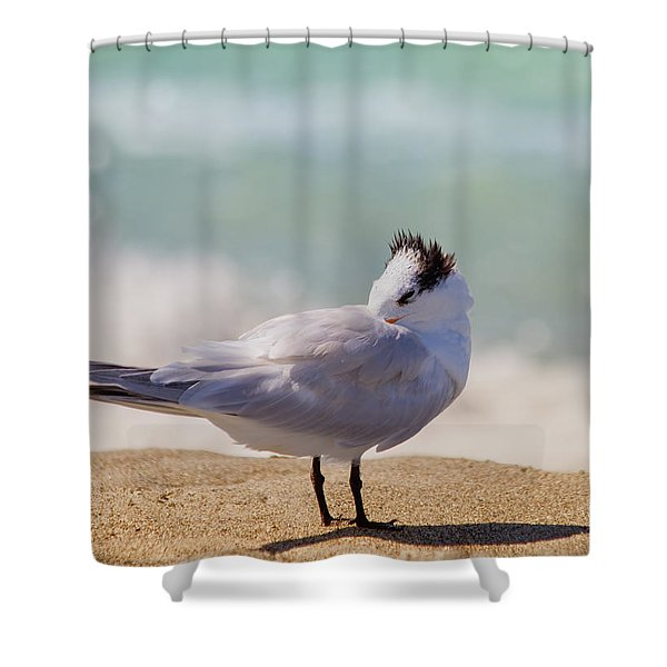 Resting at the Beach Shower Curtain by Kim Hojnacki