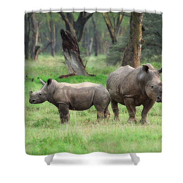 Rhino Family Shower Curtain by Sebastian Musial