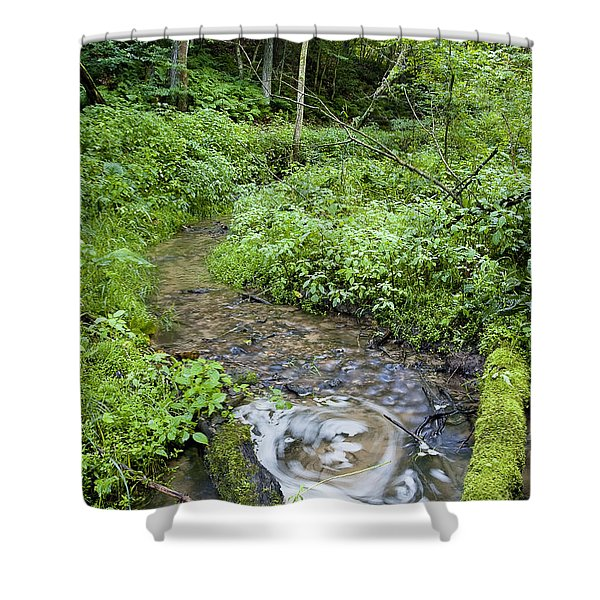 Ridgeway Creek Shower Curtain by Steven Ralser