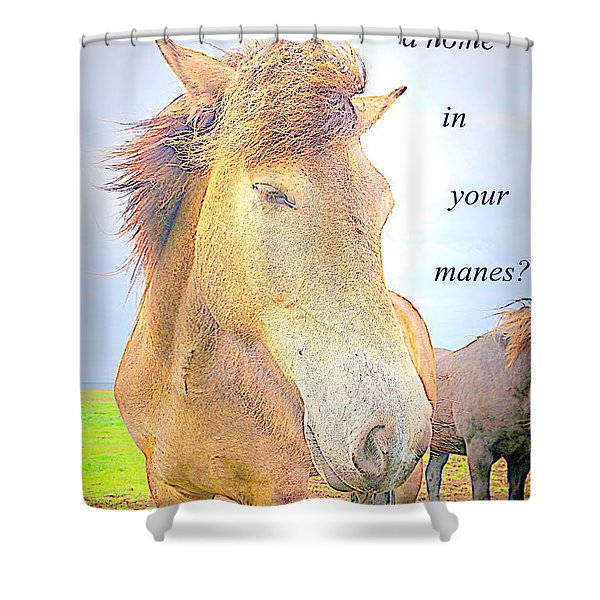 riding the whirlwind Shower Curtain by Hilde Widerberg