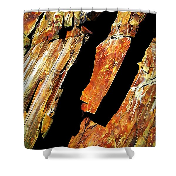 Rock Art 21 Shower Curtain by Bill Caldwell -        ABeautifulSky Photography
