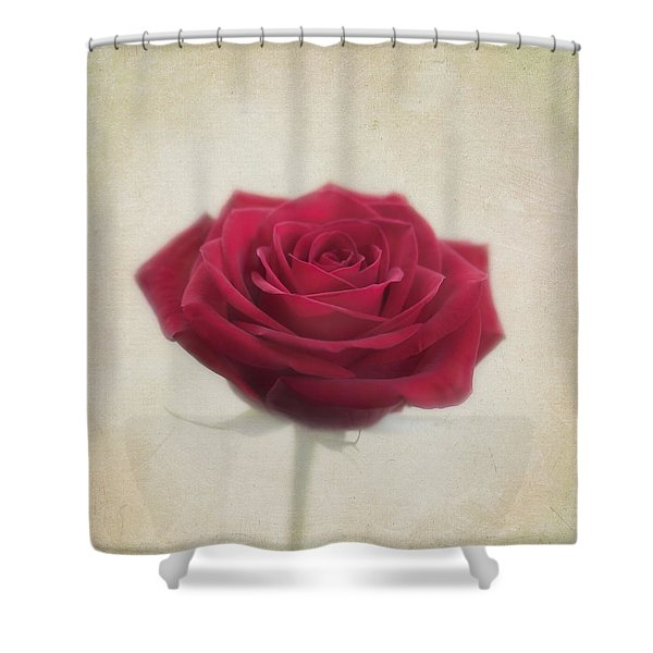 Romance Shower Curtain by Kim Hojnacki