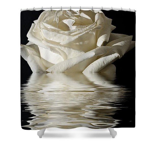Rose Flood Shower Curtain by Steve Purnell