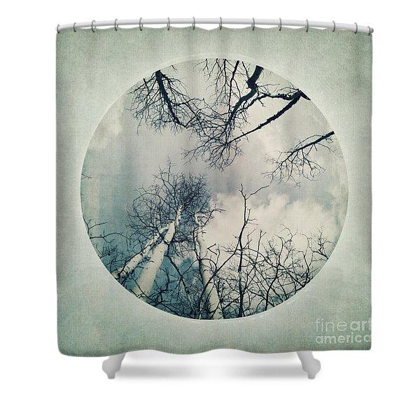 round treetops II Shower Curtain by Priska Wettstein