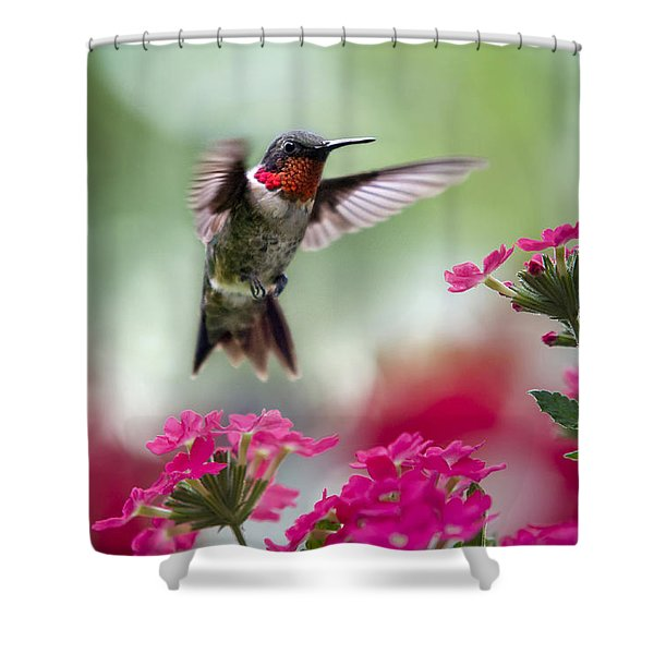 Ruby Garden Jewel Shower Curtain by Christina Rollo