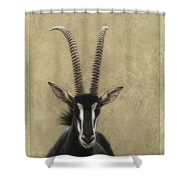 Sable Shower Curtain by James W Johnson