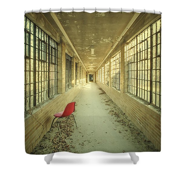 Sadly Acknowledged Shower Curtain by Evelina Kremsdorf