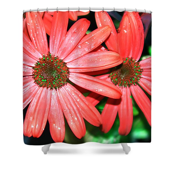 Salmon Daisy Shower Curtain by Aimee L Maher Photography and Art