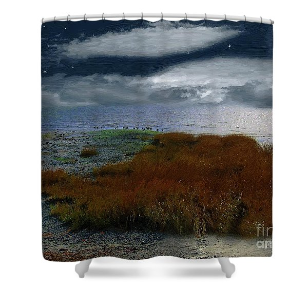 Salt Marsh at the Edge of the Sea Shower Curtain by RC DeWinter