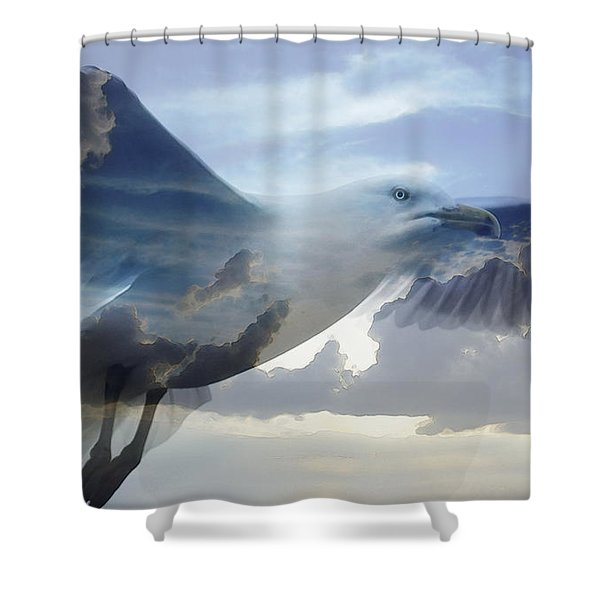Searching The Sea - Seagull Art By Sharon Cummings Shower Curtain by Sharon Cummings