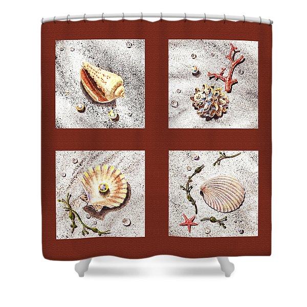 Seashell Collection Iv Shower Curtain by Irina Sztukowski