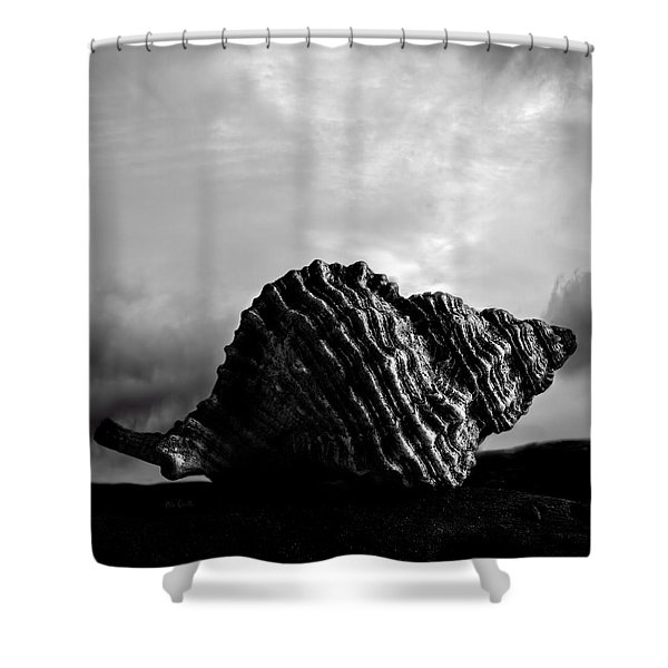 Seashell Without the Sea 2 Shower Curtain by Bob Orsillo