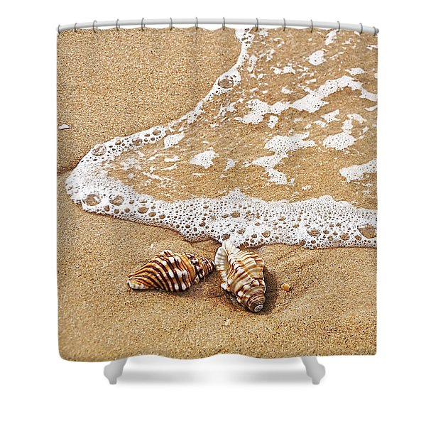 Seashells And Lace Shower Curtain by Kaye Menner