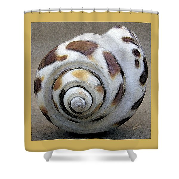 Seashells Spectacular No 2 Shower Curtain by Ben and Raisa Gertsberg