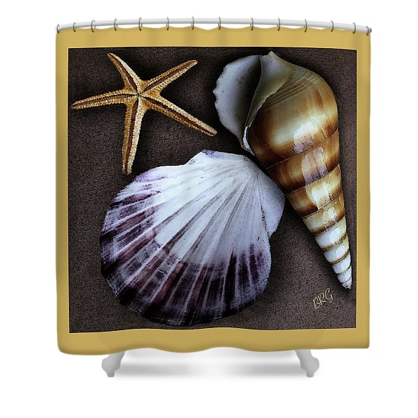 Seashells Spectacular No 37 Shower Curtain by Ben and Raisa Gertsberg