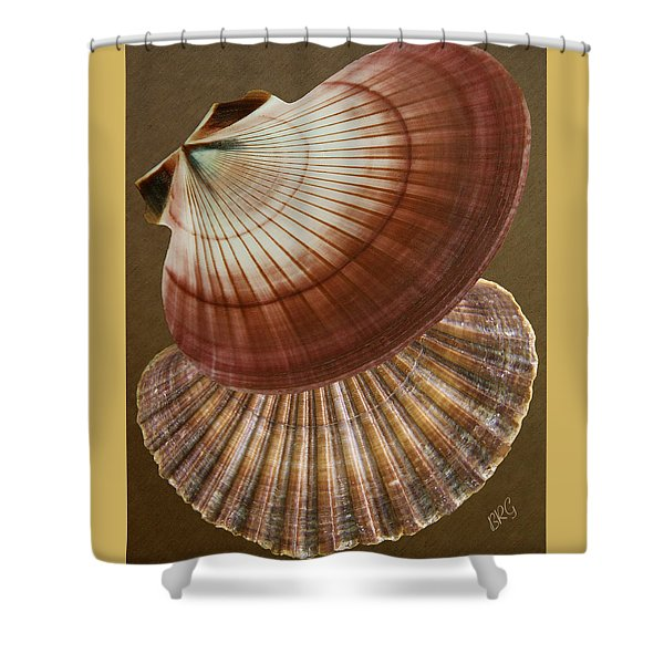 Seashells Spectacular No 53 Shower Curtain by Ben and Raisa Gertsberg