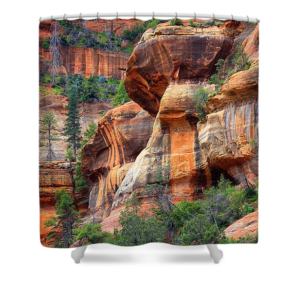 Sedona Stripes Shower Curtain by Carol Groenen