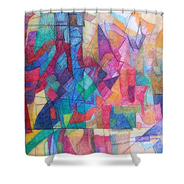 Seeking The Path To The Next World 1 Shower Curtain by David Baruch Wolk