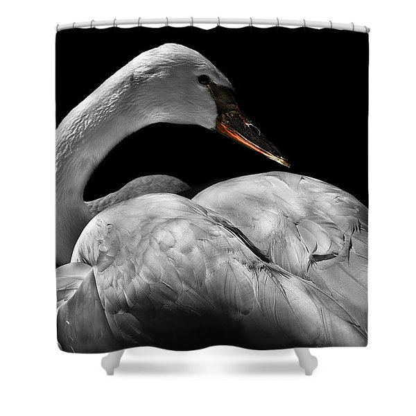 Serenity Shower Curtain by Debra and Dave Vanderlaan