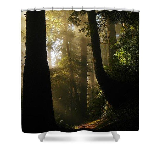 SHADOW DREAMS Shower Curtain by Jeff  Swan