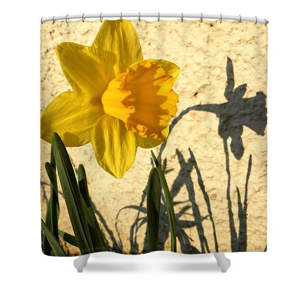 Shadowing Me Shower Curtain by Chris Berry